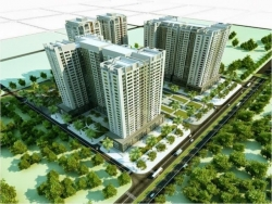 Chọn mua đất nền giá rẻ hay căn hộ chung cư